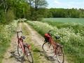 Radtour durchs Moor
